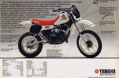 yam-pk-1982yz80[1].jpg