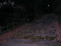 2010_0109_070536-SANY0002.JPG