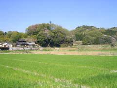 春の里山�B.JPG