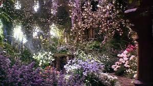 花園.jpg