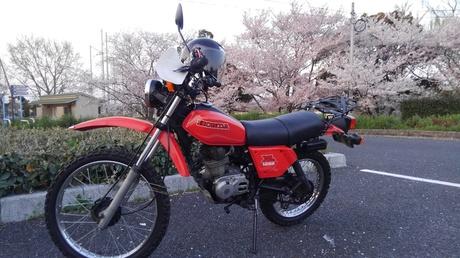 KIMG0287.JPG