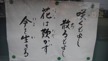 KIMG3162.JPG